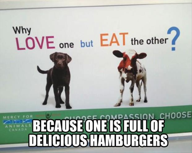 love dogs but eat cows