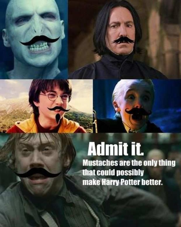 mustaches funny pictures