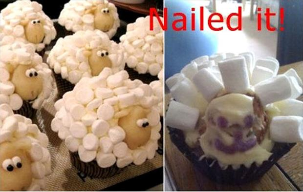 nailed it sheep