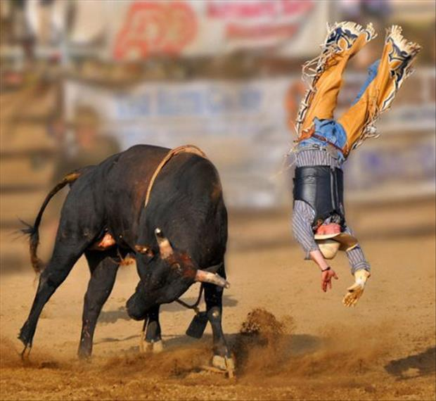 perfectly timed sports pictures, dumpaday (10)