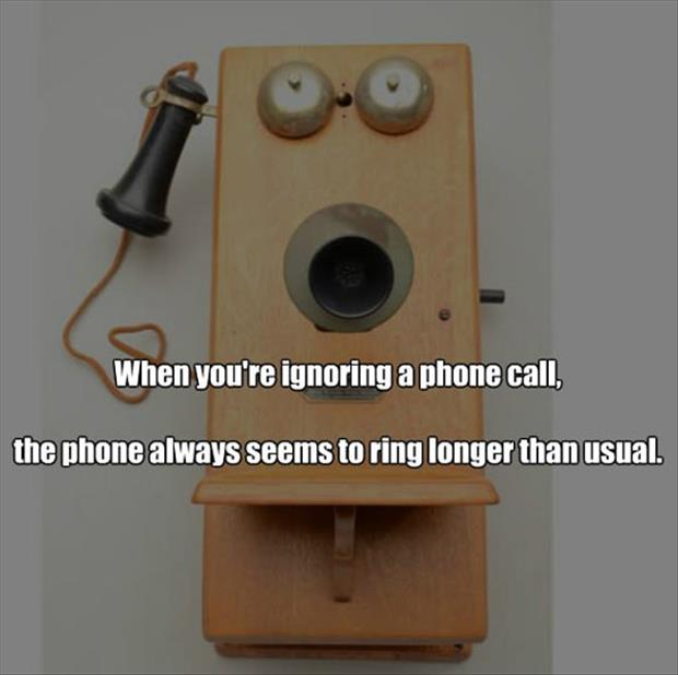 phone calls ignore it funny pictures