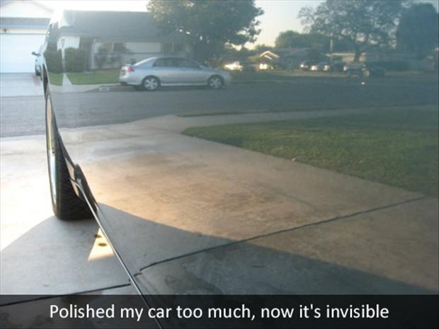polish your car funny pictures