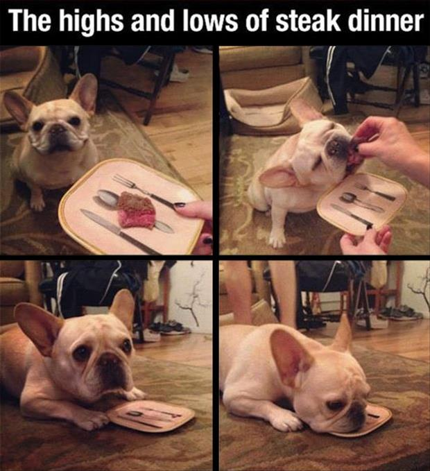 the highs and lows of eating steak