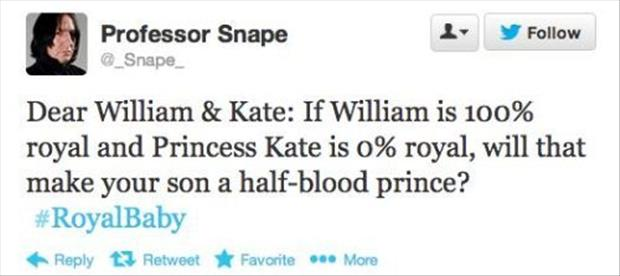 twitter quotes about the royal baby prince, dumpaday (10)