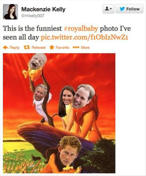 twitter quotes about the royal baby prince, dumpaday (11)