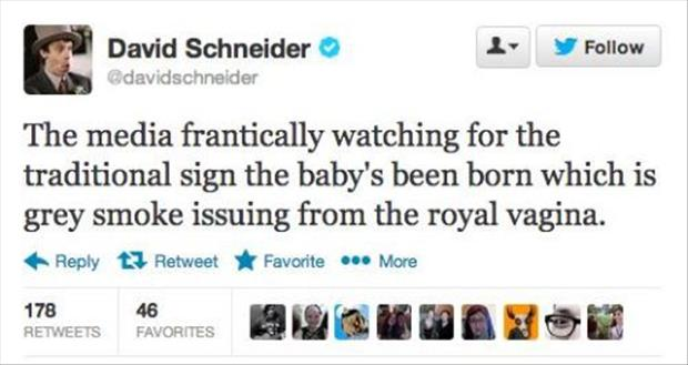 twitter quotes about the royal baby prince, dumpaday (8)