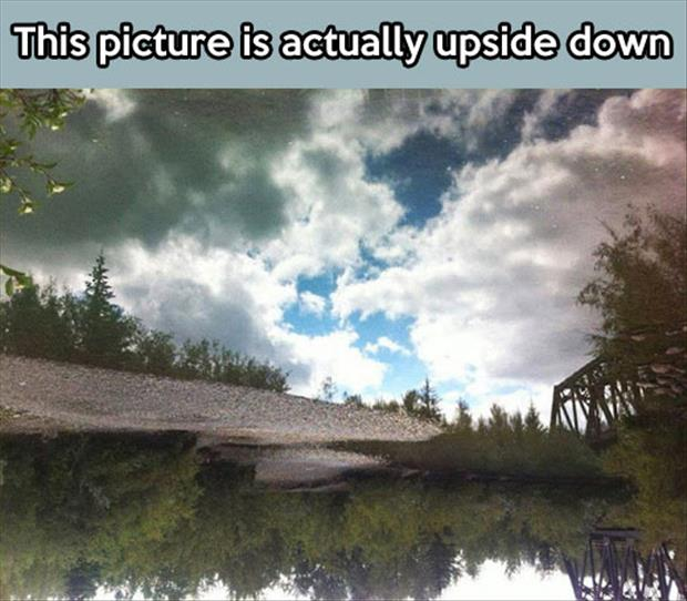 upside down picture