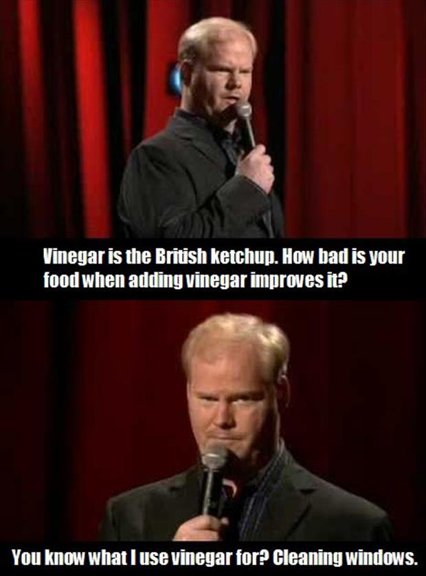 a vinegar funny pictures
