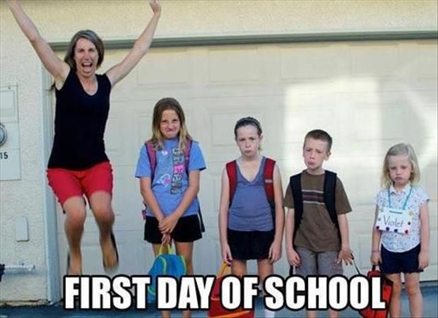 back to school funny pictures, dumpaday images (17)