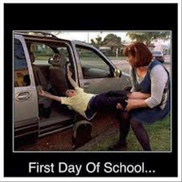 back to school funny pictures, dumpaday images (6)