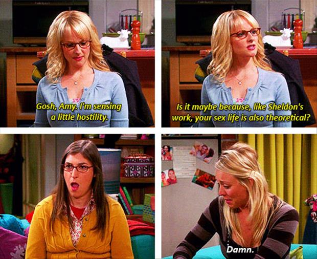 big bang theory captions