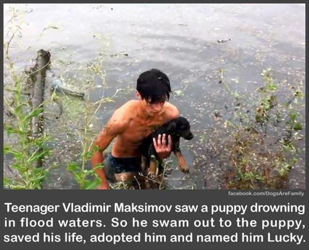 faith in humanity restored boy saves puppy