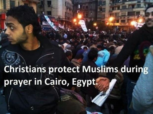 faith in humanity restored egypt