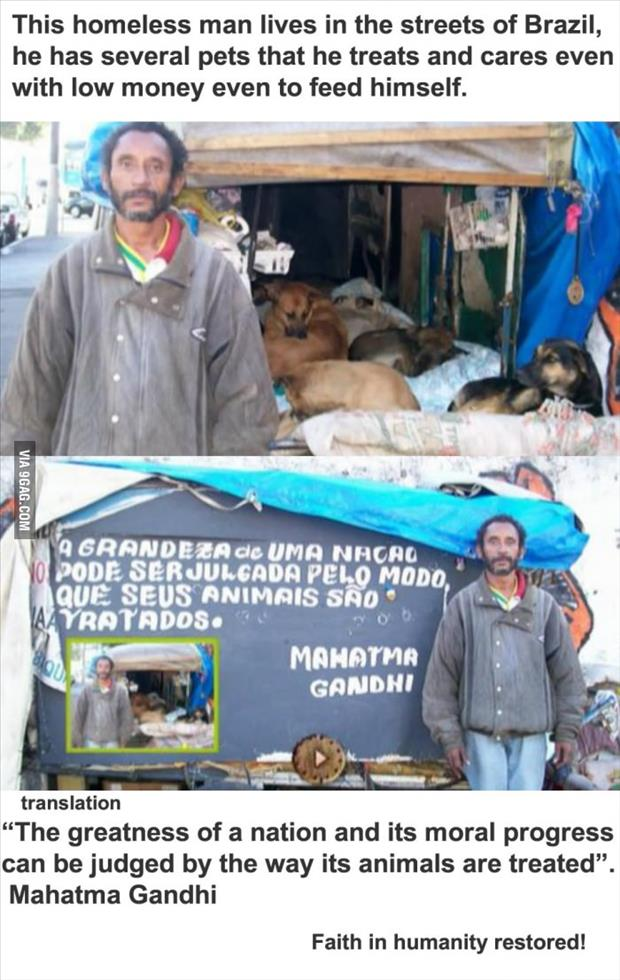 faith in humanity restored homeless man cares for animals