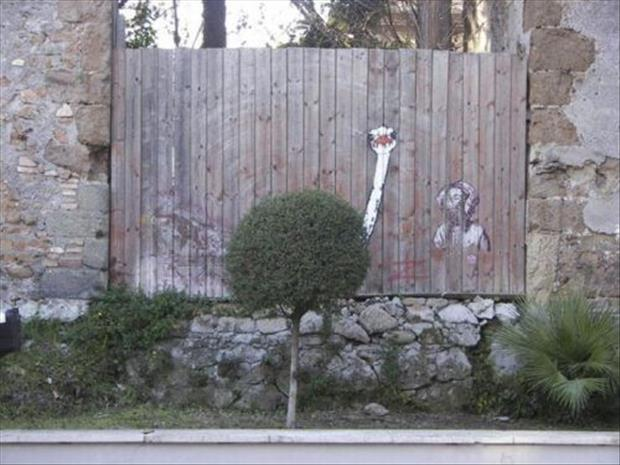 funny fences