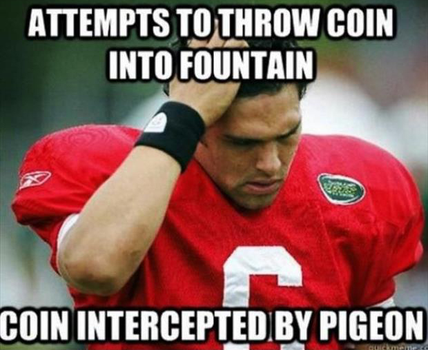 funny nfl pictures (18)