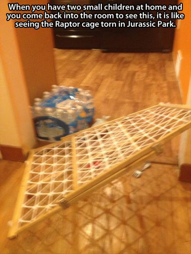 funny pictures baby gate