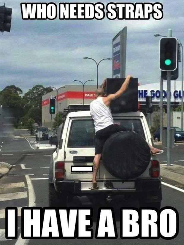 funny pictures bro