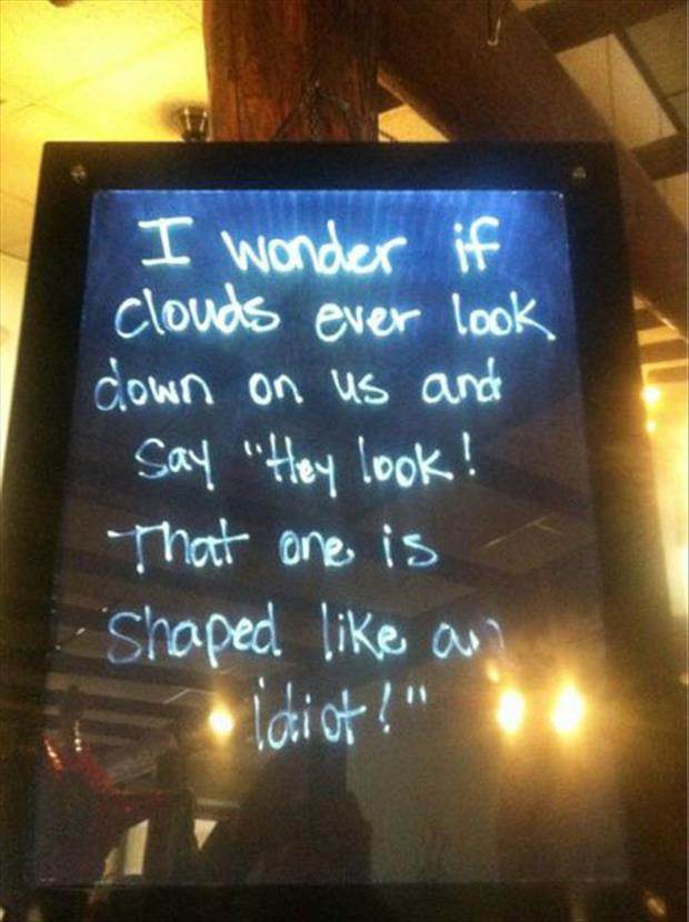 funny questions, dumpaday pictures (10)