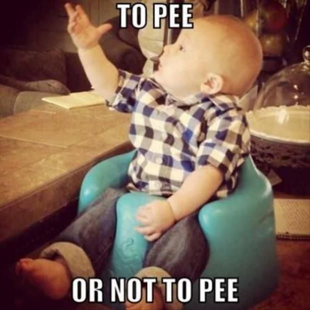 funny questions, dumpaday pictures (18)