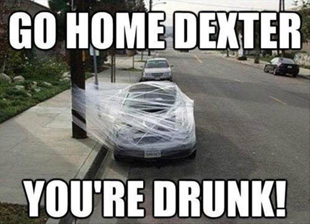 go home dexter you're drunk