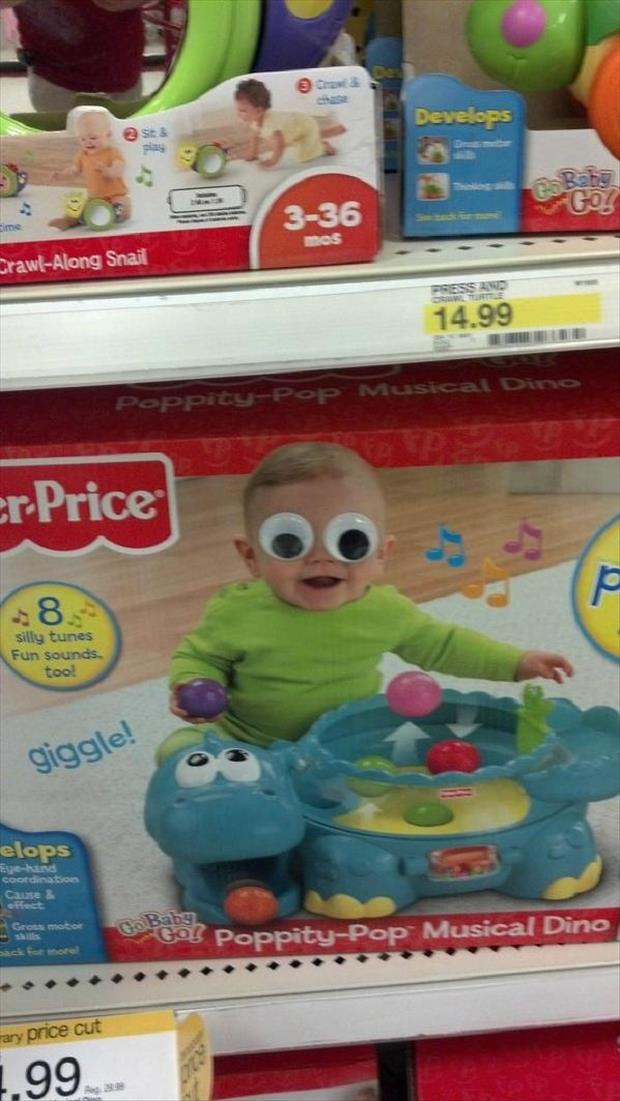 googly eyes funny pictures, dumpaday (20)