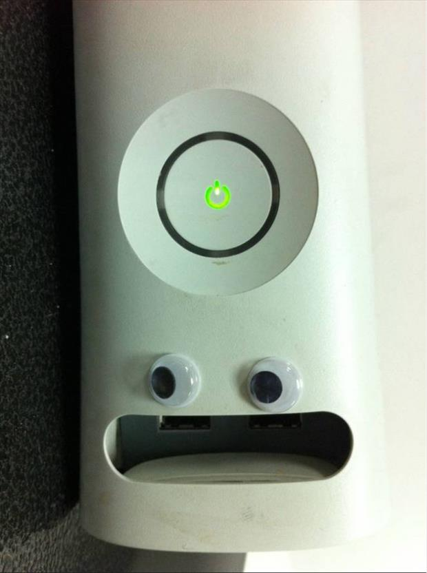 googly eyes funny pictures, dumpaday (24)