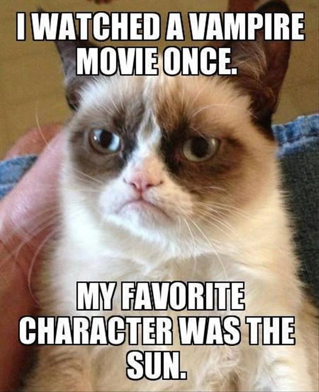 grumpy cat likes movies