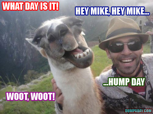 guess what day it is woot woot