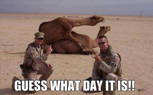 guess what day it isGuess What Day It Is Birthday Meme