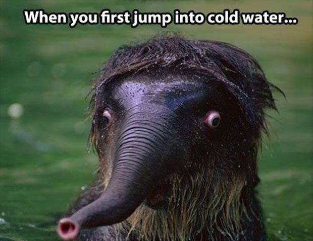 jumping into cold water