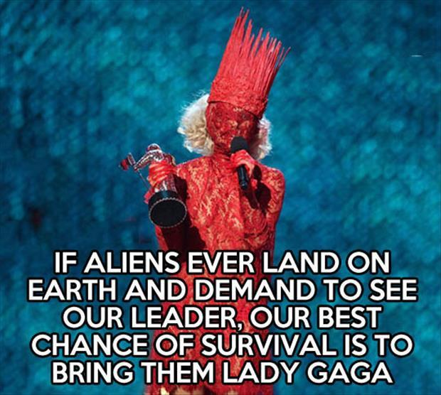 lady gaga funny pictures