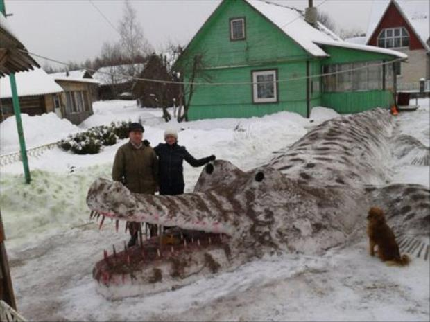 meanwhile in russia funny pictures, dumpaday (18)