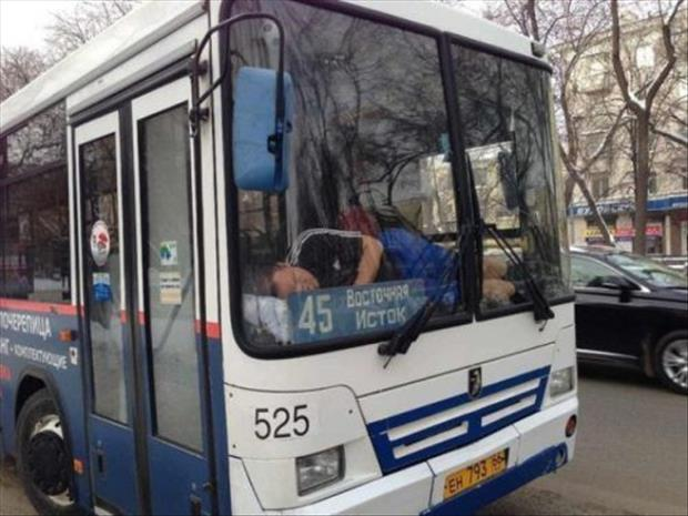 meanwhile in russia funny pictures, dumpaday (22)