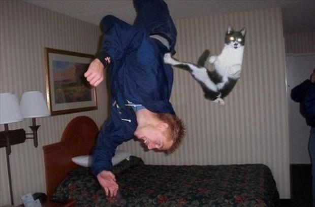 new perfectly timed pictures, dumpaday (14)