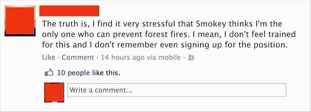 only you can prevent forrest fires