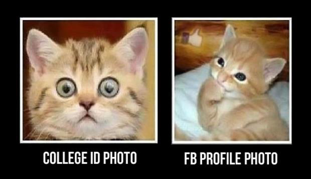 profile pictures funny pictures