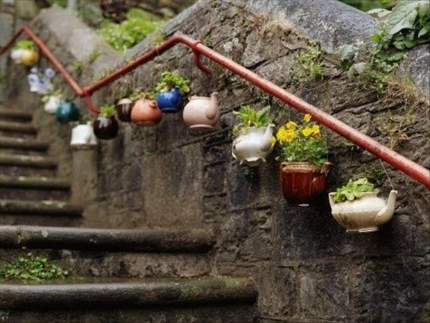 reuse old tea pots