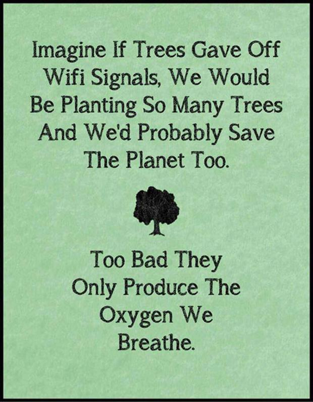 what if trees gave off wifi signals
