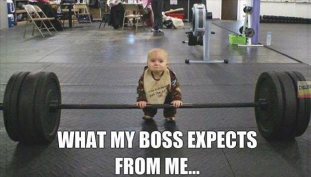 what my boss expects from me