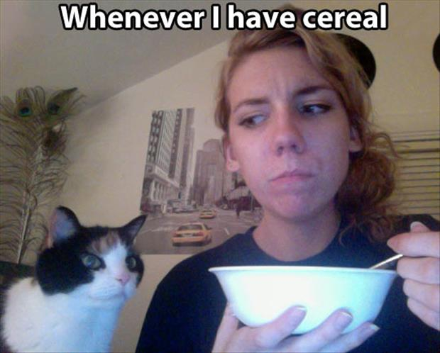 whenever I have cereal