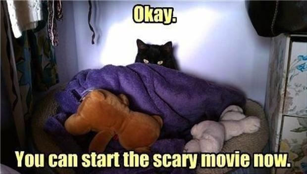 you can start the scary movie now