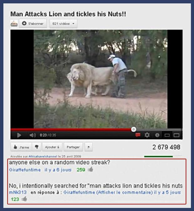 youtube video of man attacking lion and tickling his nuts