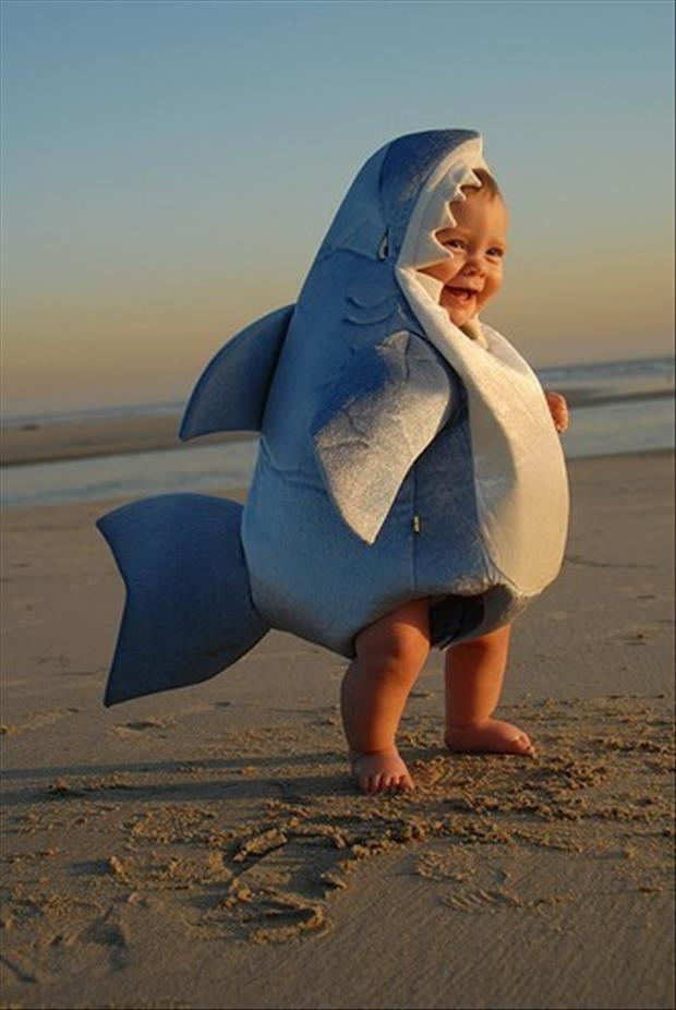 Adorable Baby Costumes- Shark Baby