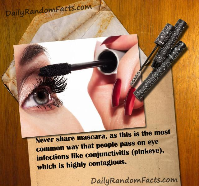 Mascara and pinkeye fact