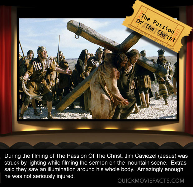 Passion of the Christ Movie Fact copy