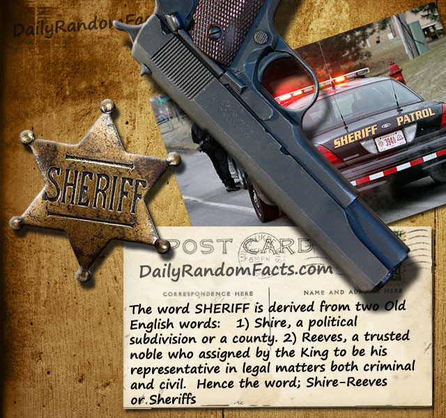 Sheriff Fact