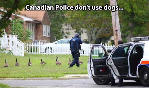 canadian police funny pictures