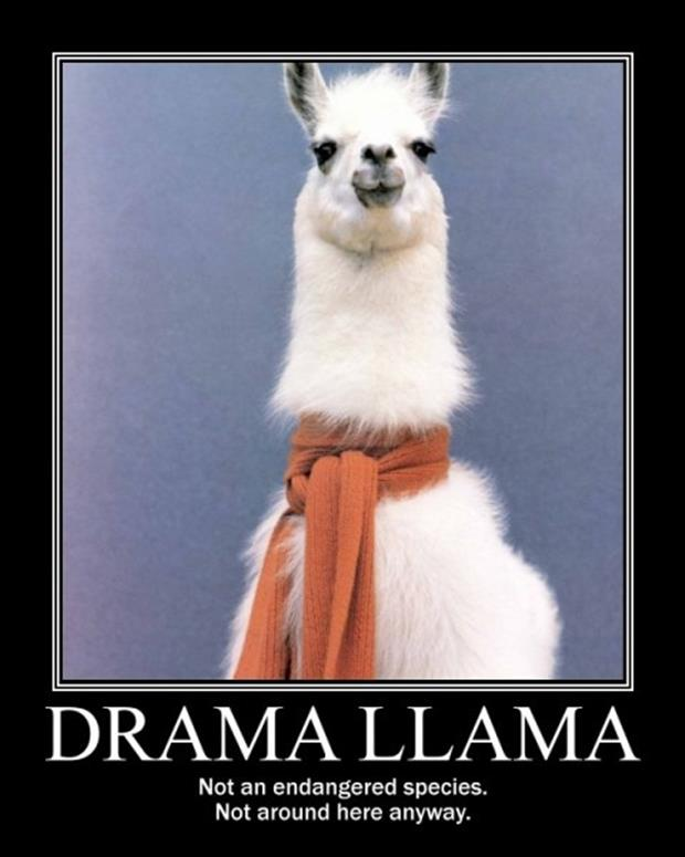 Funny Quotes About Drama: Dump A Day