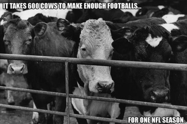 football facts (11)